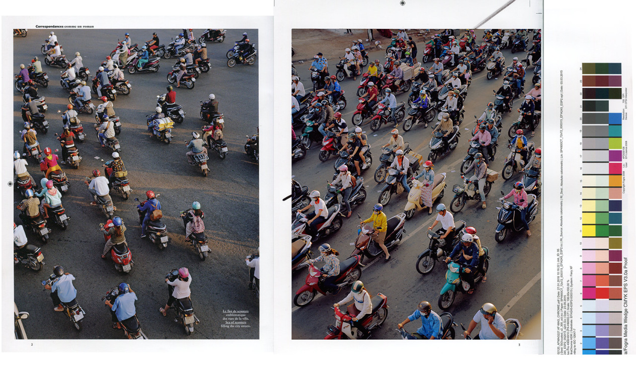 I spent some time in Hô Chi Minh City, Vietnam, for a photo essay for *Air France Magazine*. I mostly wondered around the busy markets in the suburbs; I also met several falconers in a field, who drove me back to the city-centre on a Honda scooter shared with three falcons. The birds were sat on a bar at the front, wearing masks so they didn't freak out against the oncoming traffic. - © Maciek Pożoga